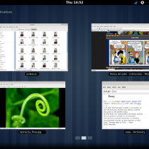 Aperu du bureau GNOME 3.0