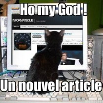 geek cat informateque